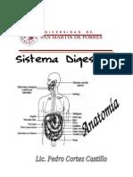 Modlo Sistema Digestivo- Usp Nuevo