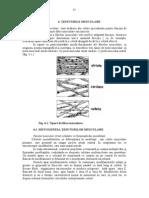 5.Biologie -t.musc-2009-85-105