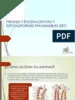 Encefalopatías espongiformes o enfermedades causadas por priones