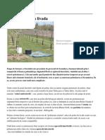 Polenizatorii din livada.pdf