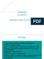 B. Tabac Culture Manifacture.ppt2