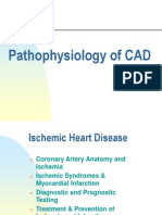 Pathophys of CAD 2011