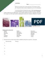 exam 2 cells membranes energy metabolism biol101 f13