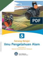 IPA 5