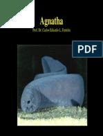 Aula 2 - Agnatha