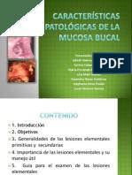Seminario de Semiologia Caracteristicas Comunes de Lesiones Elementales