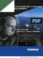 DeepCEM-spanish.pdf