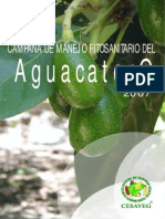 Folleto Aguacate 07