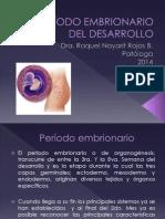 Clase Período embrionario 1 (1)