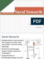 Sistem Saraf Sensorik