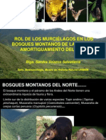 5. Murcielagos - Sandra Velazco