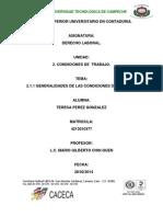 TEMA 2.1.1 ENSAYO.docx