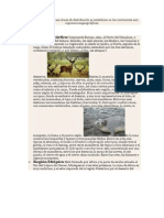 Las faunas actuales y sus áreas de distribución se establecen en los continentes seis regiones zoogeográficas