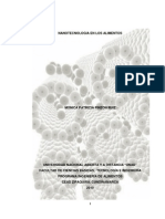 Nanotecnología en los alimentos -tes.pdf