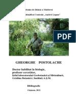 Gheorghe Postolache