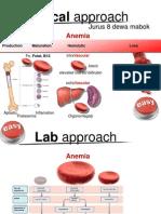 Anemia Clinskill