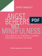 Angst beheersen met mindfulness - Jeffrey Brantley (leesfragment)