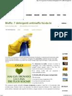 7 Detergenti Antimuffa Fai-da-te
