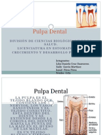 Pulpa Dental