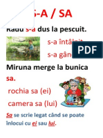 ortograme_planse
