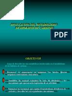 regulacion del metabolismo de glúcidos