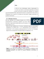 01 Fibrosis Quistica