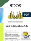 06_l_pidos