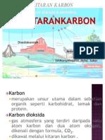 Kitaran karbon