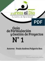 Guia Formulacion de Proyectos Paula