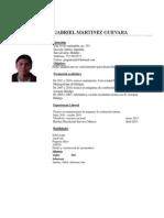 CV Gabriel Martínez
