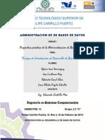 ACTIVIDAD 6.- ENSAYO-INTRODUCCIÓN AL DESARROLLO DE BASE DE DATOS