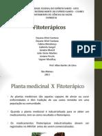 Fitoterápicos slides final