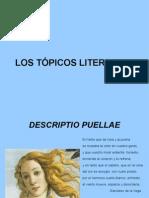 presentación-tópicos