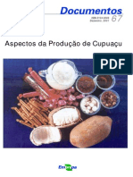 Cupuaçu 2