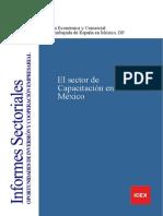 El sector de capacitación en México