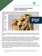 Jornaldearqueologia.net-Arte Ertica Com 4000 Anos Retrata Uma Sexualidade Escaldante Na Civilizao Mesopotmica