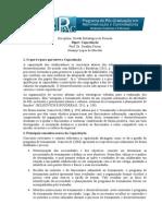 Paper 08 Capacitacao Josanny Lopes