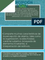 PERCEPCIÓN SOCIAL