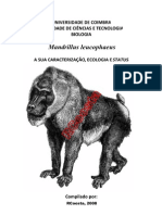 Mandrillus leucophaeus its characterization ecology and status