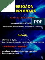 Perioada Embrionara