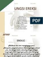Kel 3 - Disfungsi Ereksi-ppt
