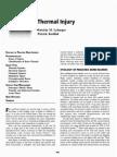 Thermal Injury (02)