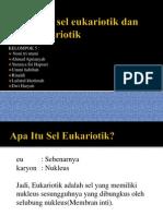 Struktur Sel Eukariotik Dan Sel Prokariotik (Ppt)