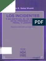 Los Incidentes-Julio E. Salas Vivaldi.
