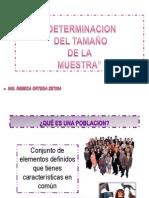 DETERMINACION DEL TAMAÑO DE LA MUESTRA
