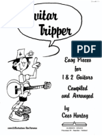 Cees Hartog - Guitar Tripper