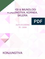 dr.Alfa - Inf & Imun Conjungtiva, Kornea, Sklera,.ppt