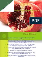 exportpotentialofpomegranate-130222040627-phpapp01