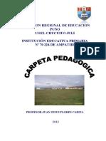CARPETA PEDAGOGICA  70 224 2013
