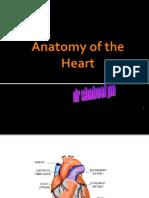 anatomyoftheheart-100401130426-phpapp01